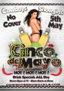 cinco-de-mayo-party